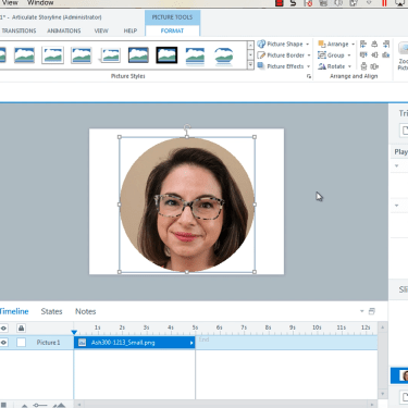 Change Picture Shape in Articulate Storyline