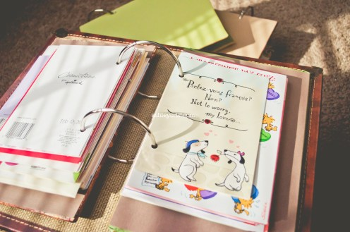 #HousewifeInsights DIY Card Binder