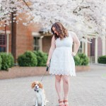 Dog Photoshoot Ideas Tips For Pictures Of Your Dog Ashleyeaglesonphotography Com