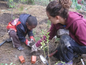 Planting flowers, changing lives