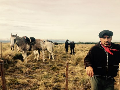 A few of the horses and our Argentinian gaucho leader for the day