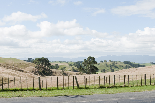 New-Zealand-Hobbiton-Landscape-by-Ashley-Lynn-Photography (32)