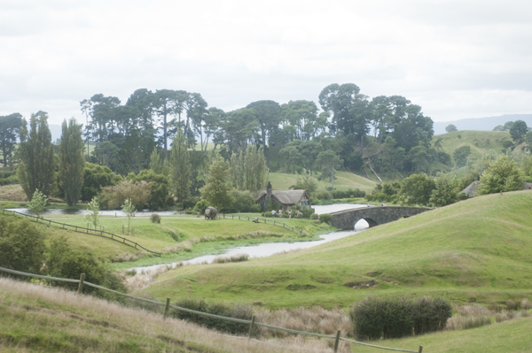 New-Zealand-Hobbiton-by-Ashley-Lynn-Photography (4)