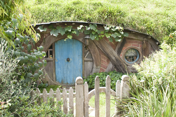 New-Zealand-Hobbiton-by-Ashley-Lynn-Photography (6)