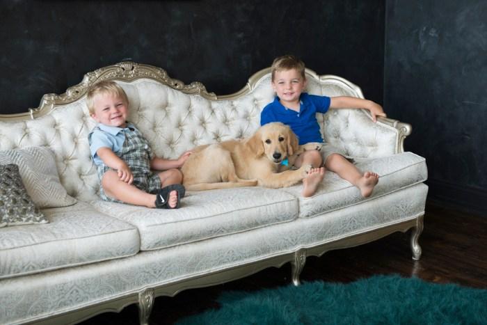 Dayton-Ohio-National-Dog-Day-Session-by-Ashley-Lynn-Photography1004