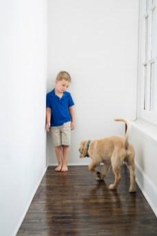 Dayton-Ohio-National-Dog-Day-Session-by-Ashley-Lynn-Photography1005
