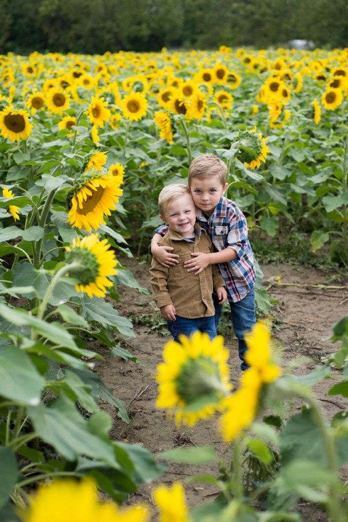 Family-Session-Sunflower-Field-by-Ashley-Lynn-Photography-1003