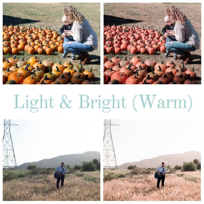Light and Bright Warm-Tone Lightroom Preset