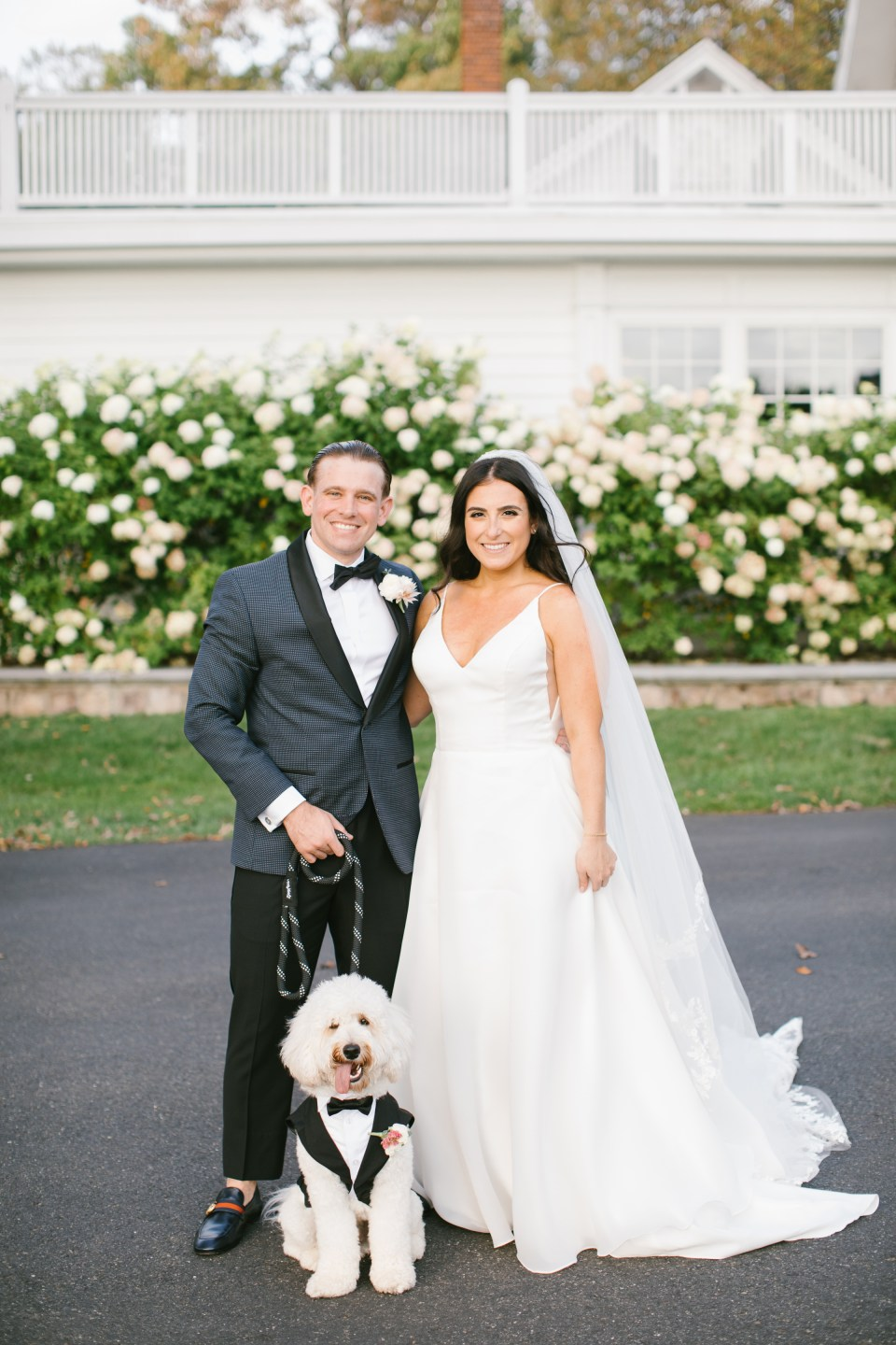 Ashley Mac Photographs photographs bride and groom with dog