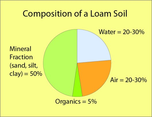 Composition of a Loam Soil