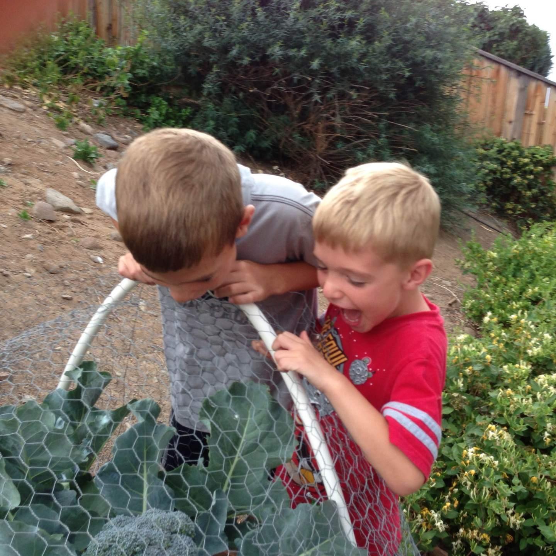 Gardening around Children