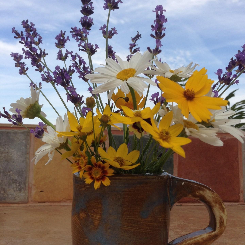 Hardworking Flowers for Your Summer Garden