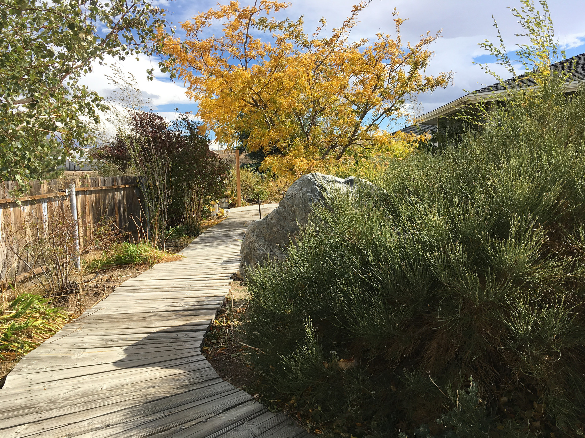 Create a Plan to Successfully Renovate Your Landscape