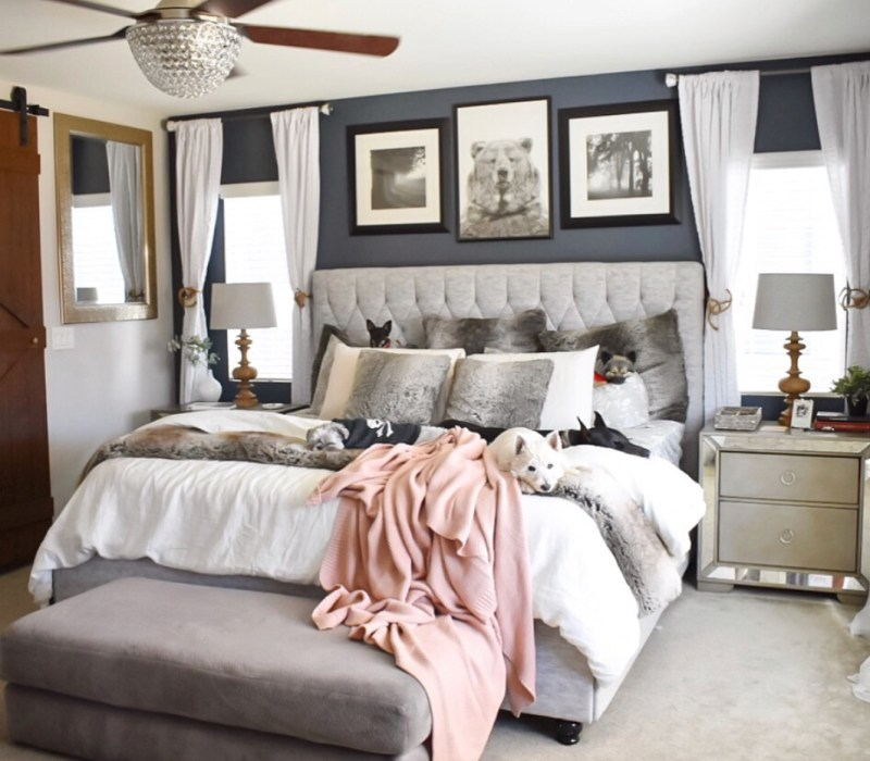 Ashley Nicole Interiors Dogs and Design Bedroom