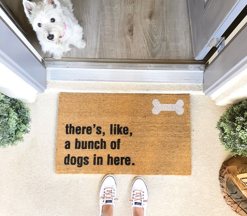 Ashley Nicole Interiors Dogs and Design Entryway