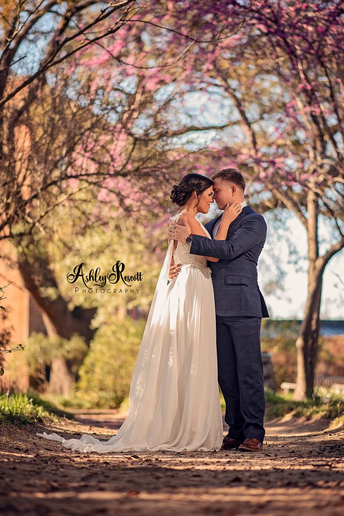 wedding couple in walkway in front of tree