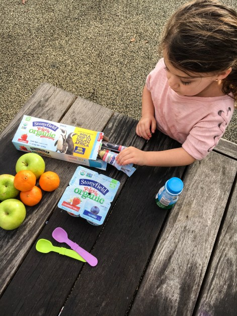 Yogurt Snack For Kids Stonyfield Organic