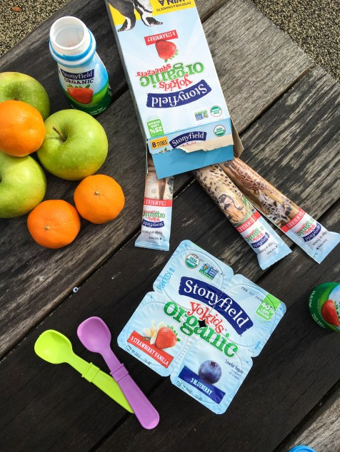 Snack TIme With Kids Organic Yogurt Alternative Less Sugar