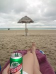Beer and beach betches