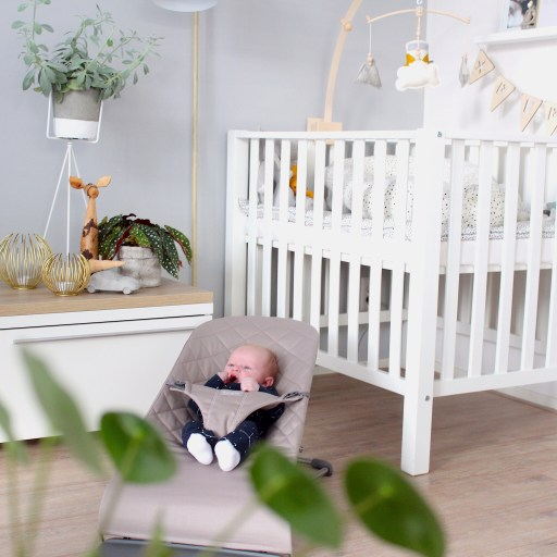 De BabyBjorn wipstoel die past in elk interieur