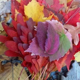 leaves_2web