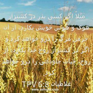 غلاطیان باب۶آیه ۸