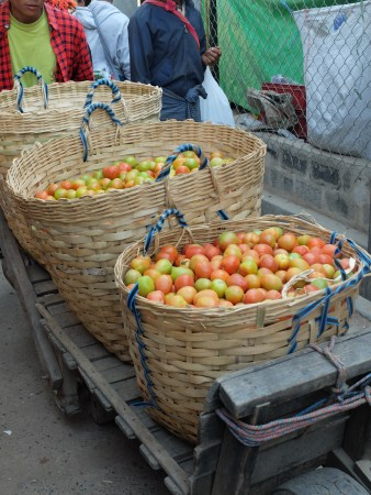 Tomatoes are a major crop for Inle