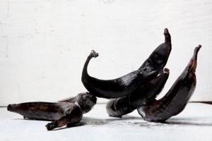 LORENZO VITTURI: DALSTON ANATOMY │ Photographers' Gallery, London → 19 October 2014