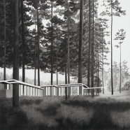 Rosenbaum #3, Jemma Appleby, charcoal on paper
