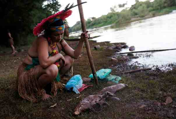 An indigenous woman looks at dead fish near the Paraopeba river in the Cerrado. Photograph: Adriano Machado/Reuters