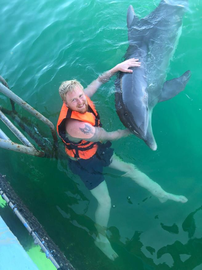 Swim with dolphins - The Ultimate Bucket List