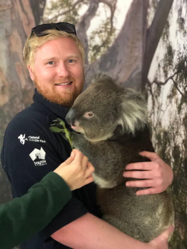Hold a Koala - The Ultimate Bucket List