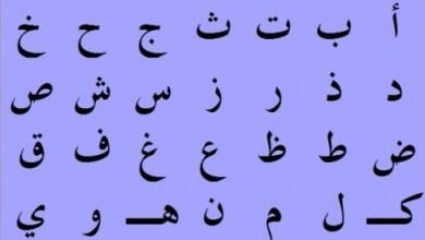 Photo of التخطيط: الكتب الرسمية للوزارات تعج بالأخطاء اللغوية الفاحشة