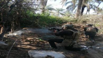 Photo of قتل ارهابي في اشتباك وتدمير مضافات بديالى