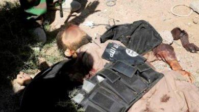 Photo of طيران الجيش يقتل ثمانية عناصر من داعش بضربة جوية استهدفت مركبتهم شرق سامراء