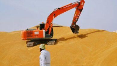 Photo of محافظ واسط: وصول كميات الحنطة المسوقة 317 الف طن بعد أسبوعين من بدء التسويق في المحافظة