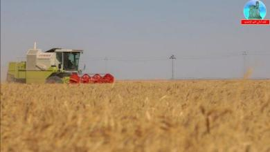 Photo of الزراعة: ماضون باتجاه المكننة الحديثة ودعم الفلاحين بالآليات