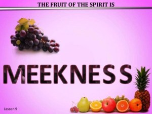 THE FRUIT OF THE SPIRIT – MEEKNESS