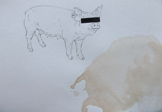 "graphite, screenprint and stamped raw lamb 3"" x 4"" 2016"