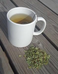 Tea: Warm Hug