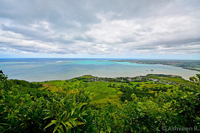 Climbing Lion Mountain-The View Over Grand Port Bay