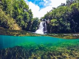 Eau Bleue Mauritius - Waterfall 2 Half Water View