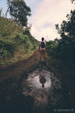 Hiking Le Morne Mountain - Puddle of Mud