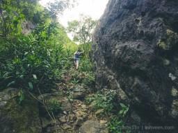 Hiking Pieter Both Mountain Mauritius - Some Interesting Climbs