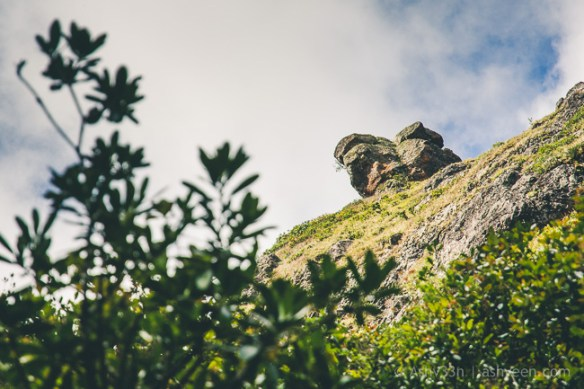 Hiking Pieter Both Mountain Mauritius - View of the Head down below