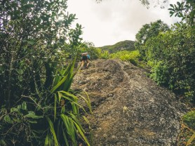 Hiking Pieter Both Mountain Mauritius - The First Climb
