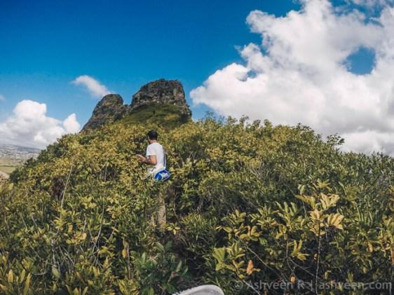 Hiking Trois Mamelles - Serious Ascent