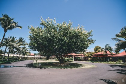 Instameet Mauritius: Tamassa Resort - The Entrance