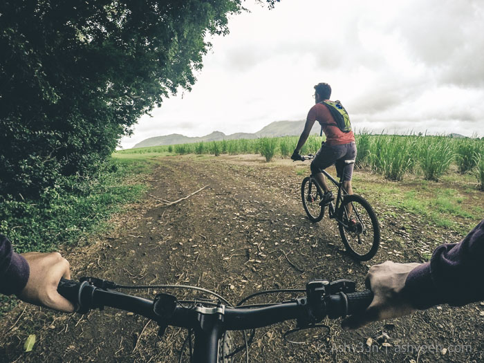 MTB Mauritius - Bassin Estate - Riviere Papayes