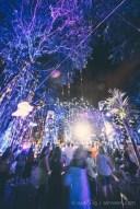 Porlwi By Light 2016 - Company Gardens
